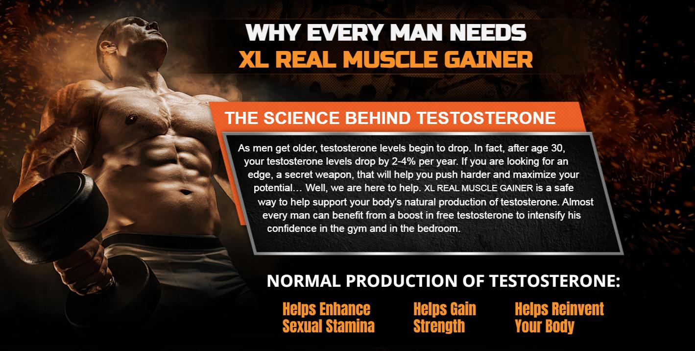 XL Real Muscle Gainer [XL Real Muscle Gainer Male Enhancement] Price?